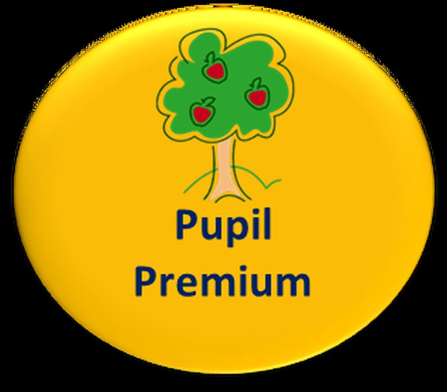 Image result for pupil premium logo