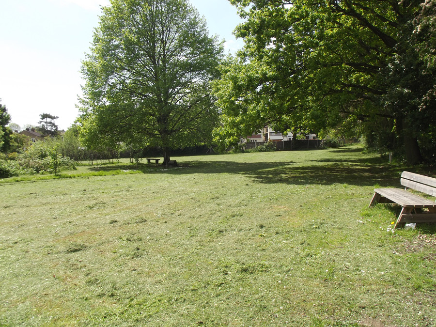 School Field and Quiet Area