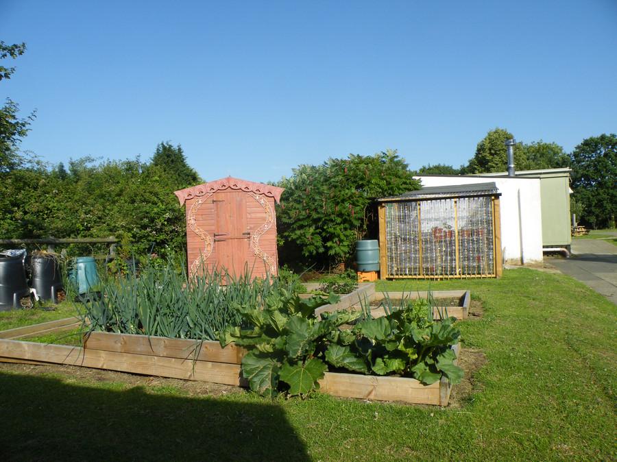 Year 3/4 Garden Area & Greenhouse