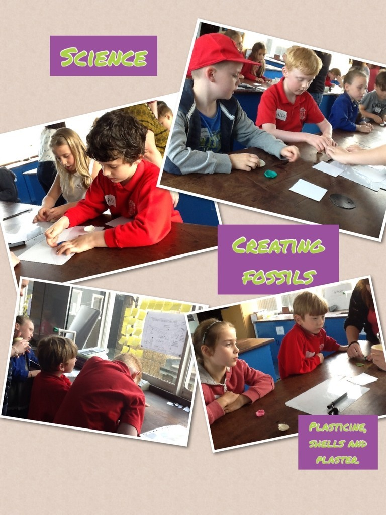 Science - making fossils