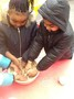 As part of our 'Winter' topic, we made bird feeders.