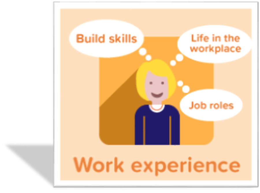Click here to read about our work experience programme at KHS.