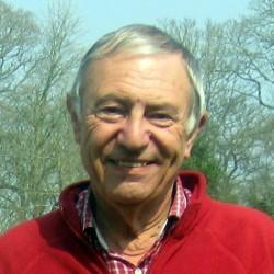 David Gringell
