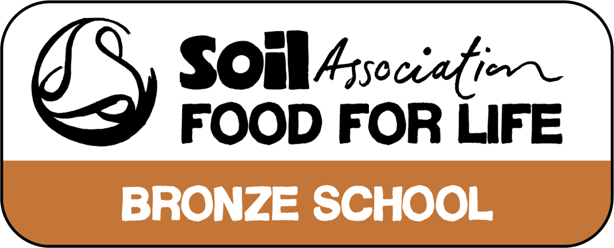 Image result for bronze school food for life