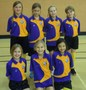 <p>Year 5 Girls     Indoor Athletics District Champions</p>
