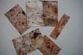 Marbled paper by Joanne.JPG