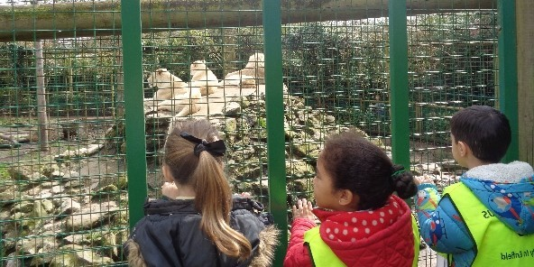 Latest News - Nursery at Paradise Wildlife Park