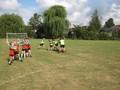 Tag Rugby (49).JPG