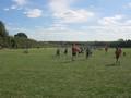 tag rugby (23).JPG