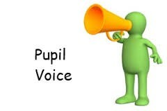 Image result for pupil questionnaire