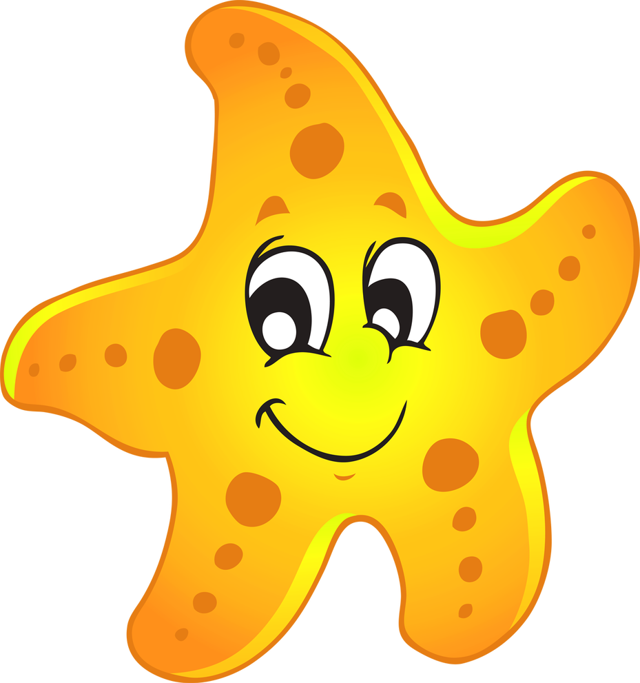 Image result for starfish class