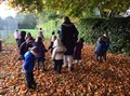We went on an autumn walk, to observe seasonal changes,.....