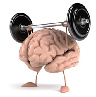 Image result for ks2 brain
