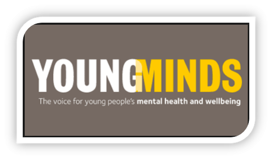 Young Minds Charity Parent Advice Website
