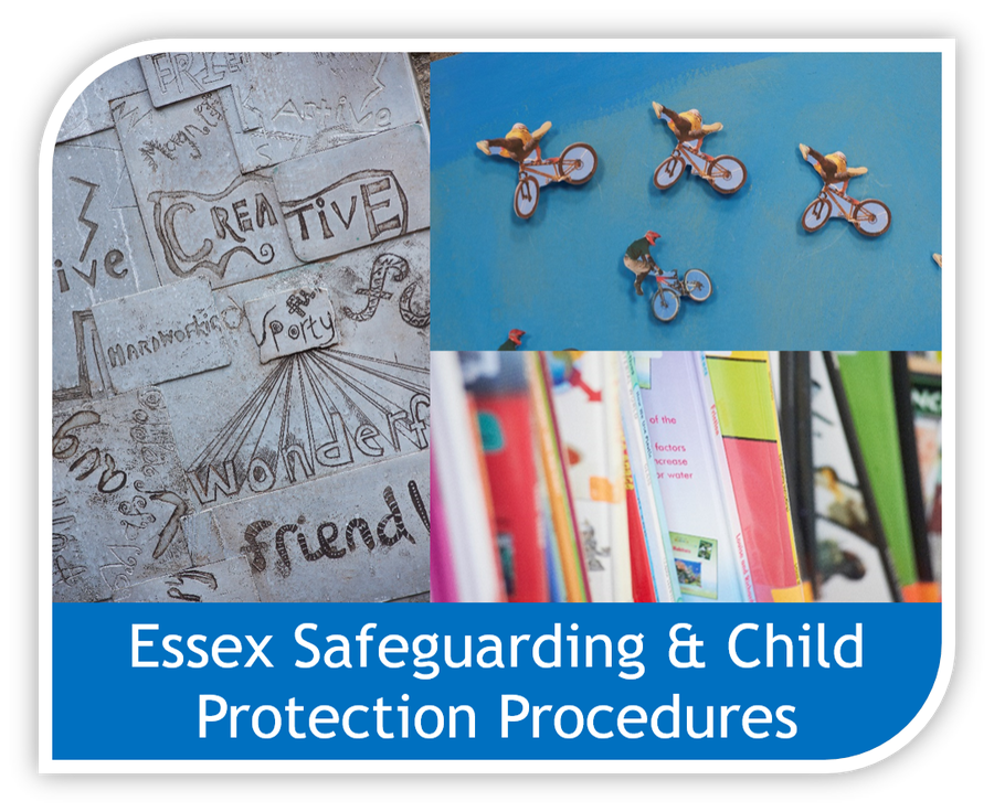 Click here to view the Essex Safeguarding and Child Protection procedures document