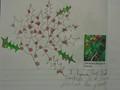 science roses (8).JPG