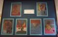 Art Displays (16).JPG