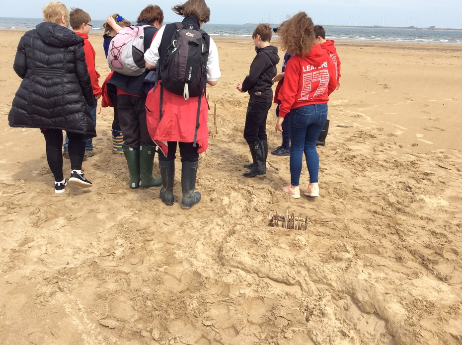 Year 6 Visit Teesmouth Field Centre