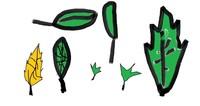 Leaf 07.jpg