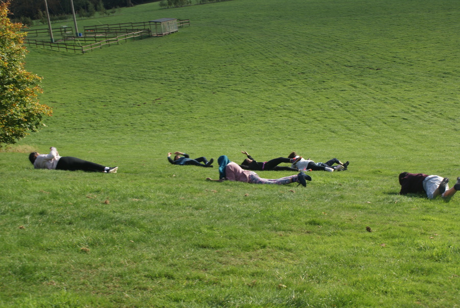 Everyone loves rolling down a hill!