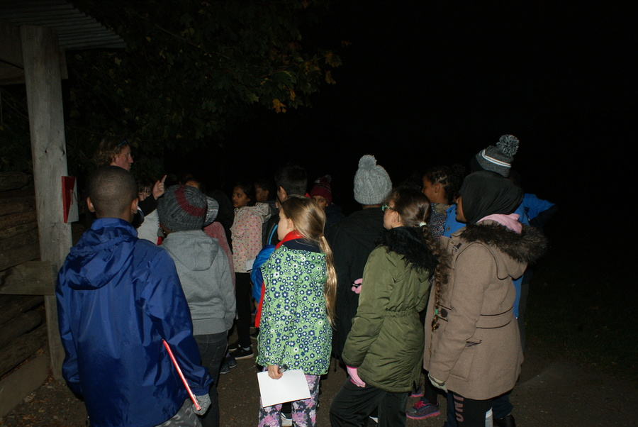 Torches at the ready! Orienteering in the dark is actually very difficult!