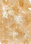 papyrus writing.JPG