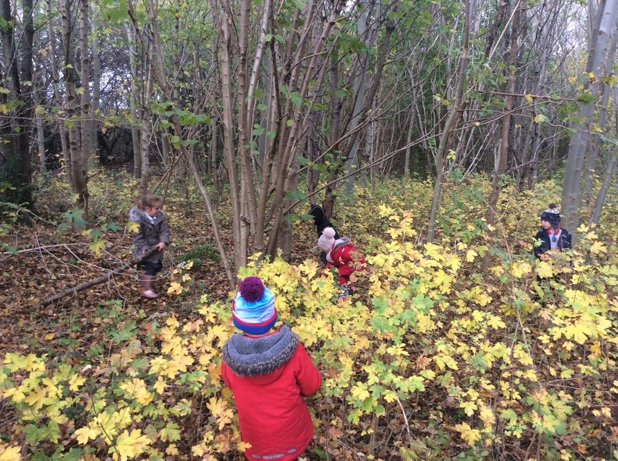In the woods with Mrs Ben Ghalba's class.