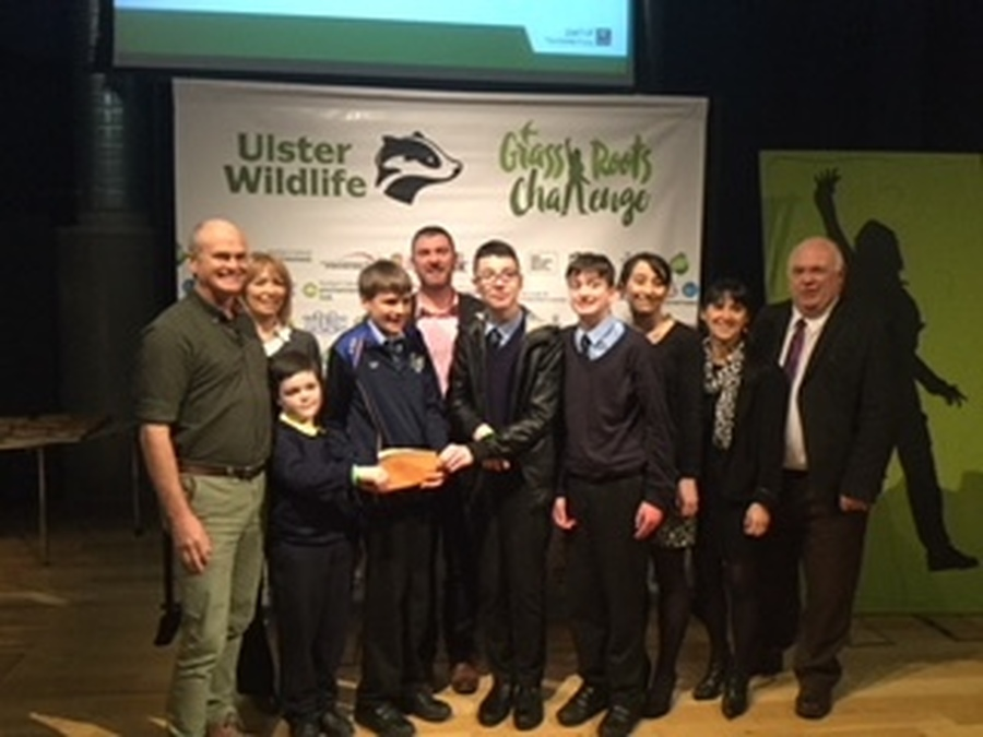 Grassroots Challenge Winners