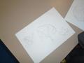 Art drawing leaves (2).JPG