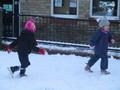 Rose chased Ebony!