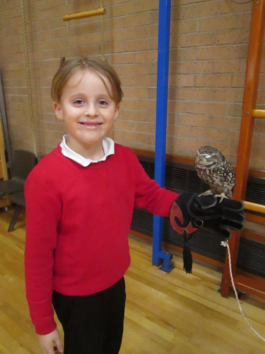 Y1 children learning first-hand about birds of prey.