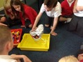 Testing our boats!
