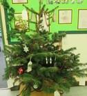Xmas tree 6.jpg