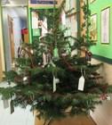 Xmas tree 7.jpg