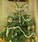 Xmas tree 8.jpg