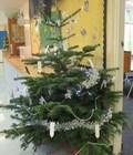 Xmas tree 9.jpg