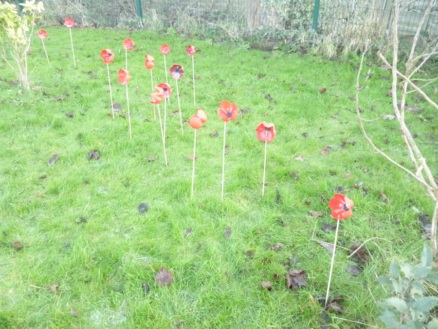 Year 6 created and planted poppies for our Peace Garden
