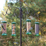 bird feeding station.jpg