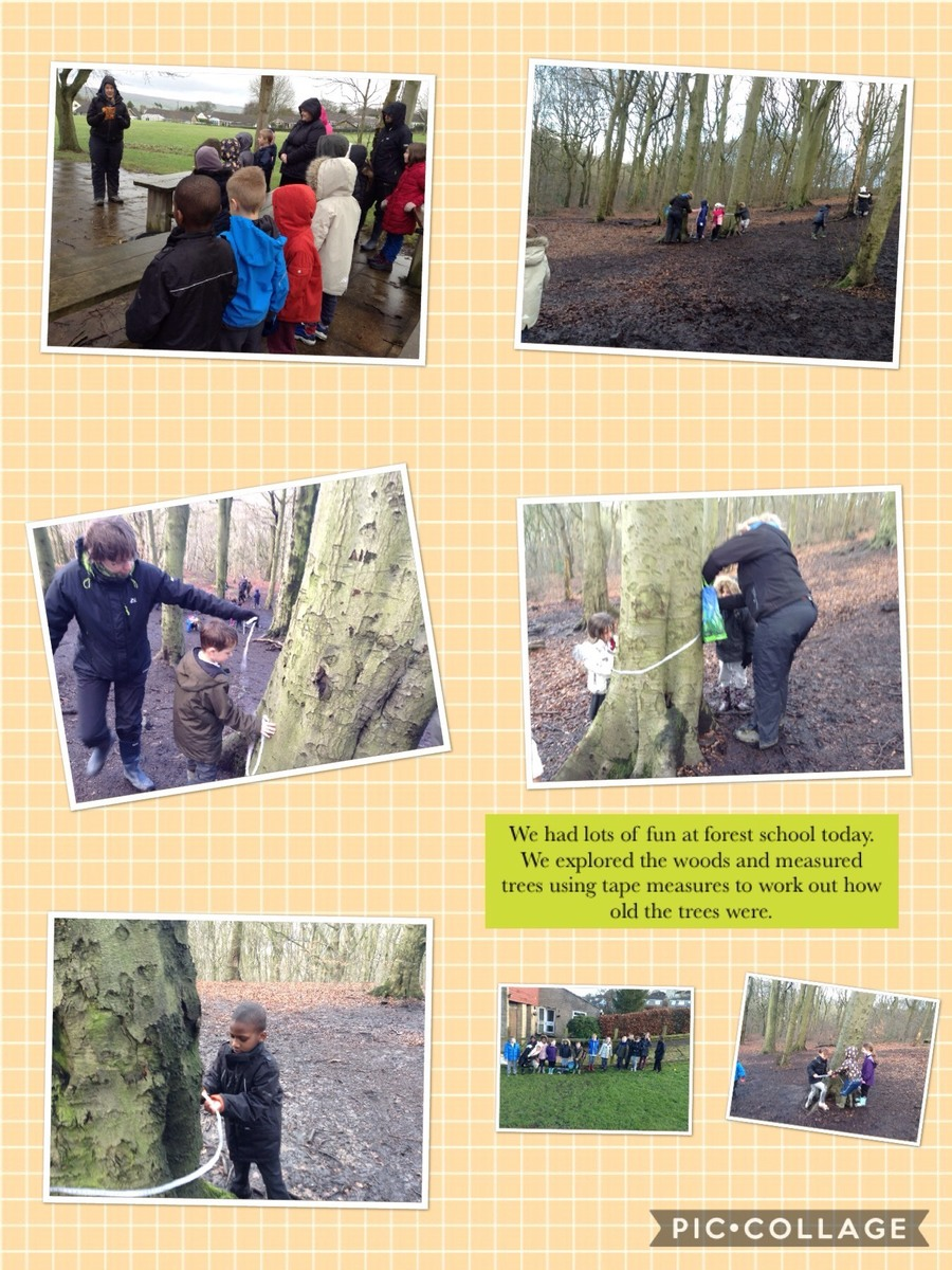 Forest School 29th January