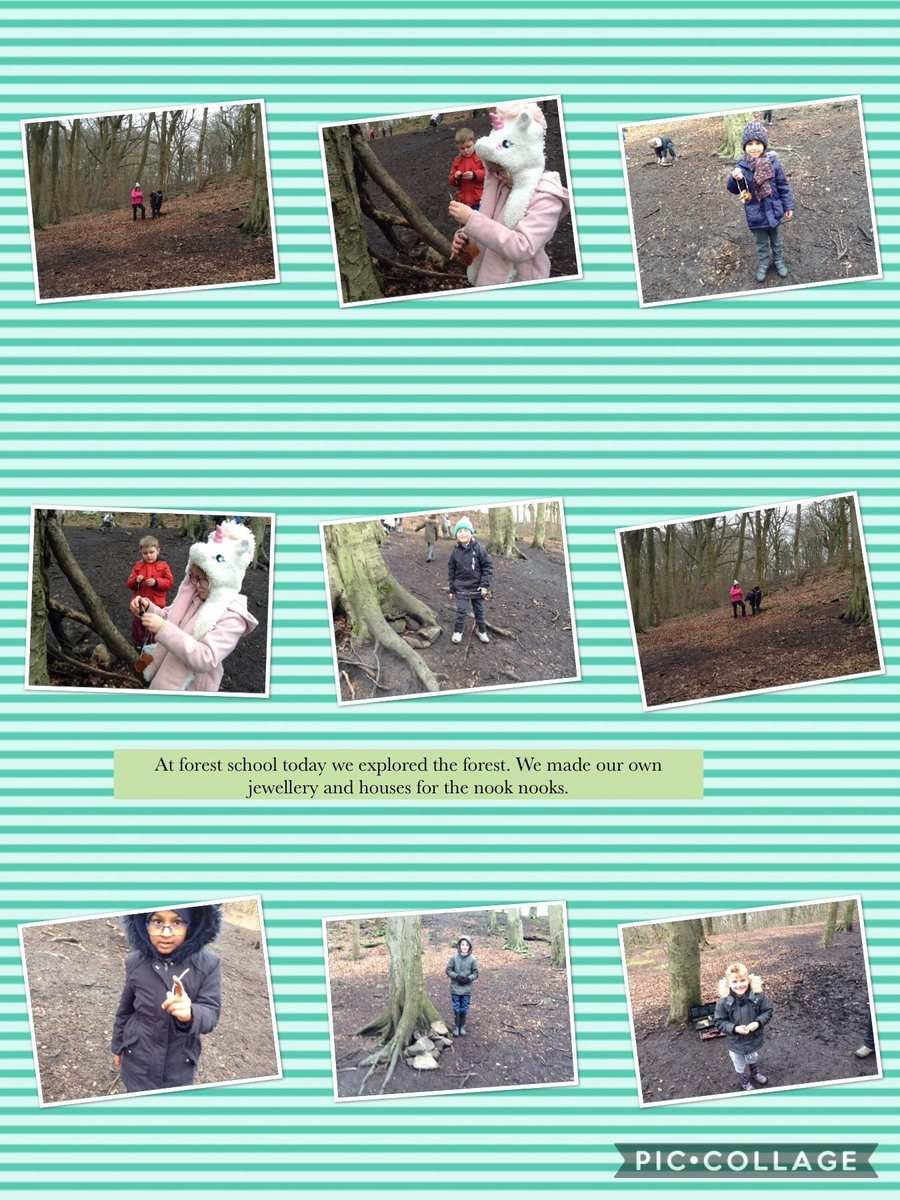 Forest School 5th February