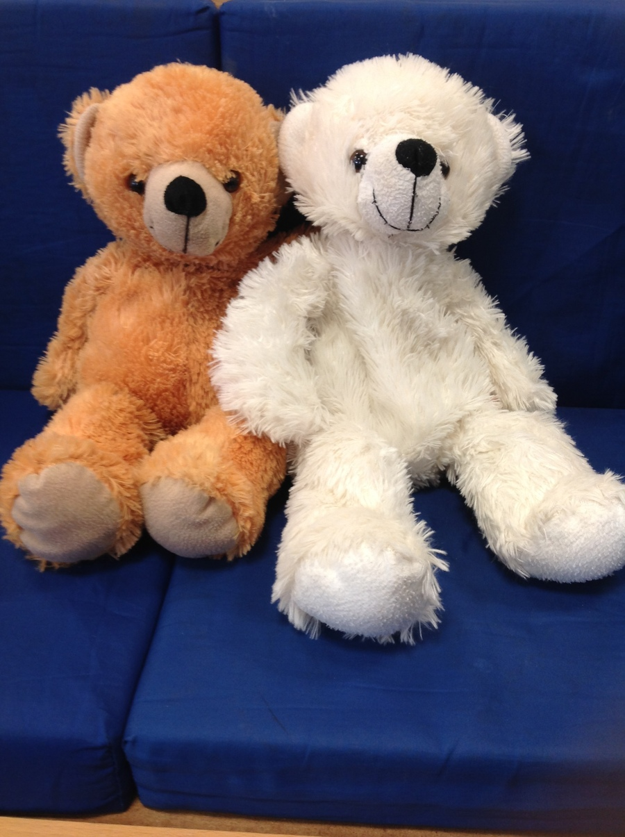 The morning children decided to name their brown bear 'Fred' and the afternoon children decided to name their white bear 'Wolly-Bob Coconut'