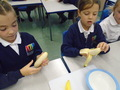 We mashed up banana to go in our porridge!
