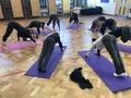 Year 6 yoga.jpg