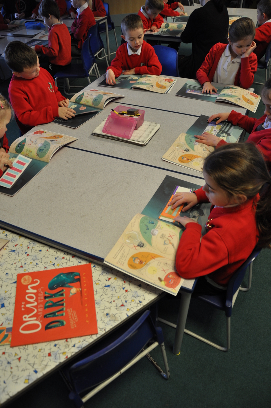 Year 2 with their first whole class reading books