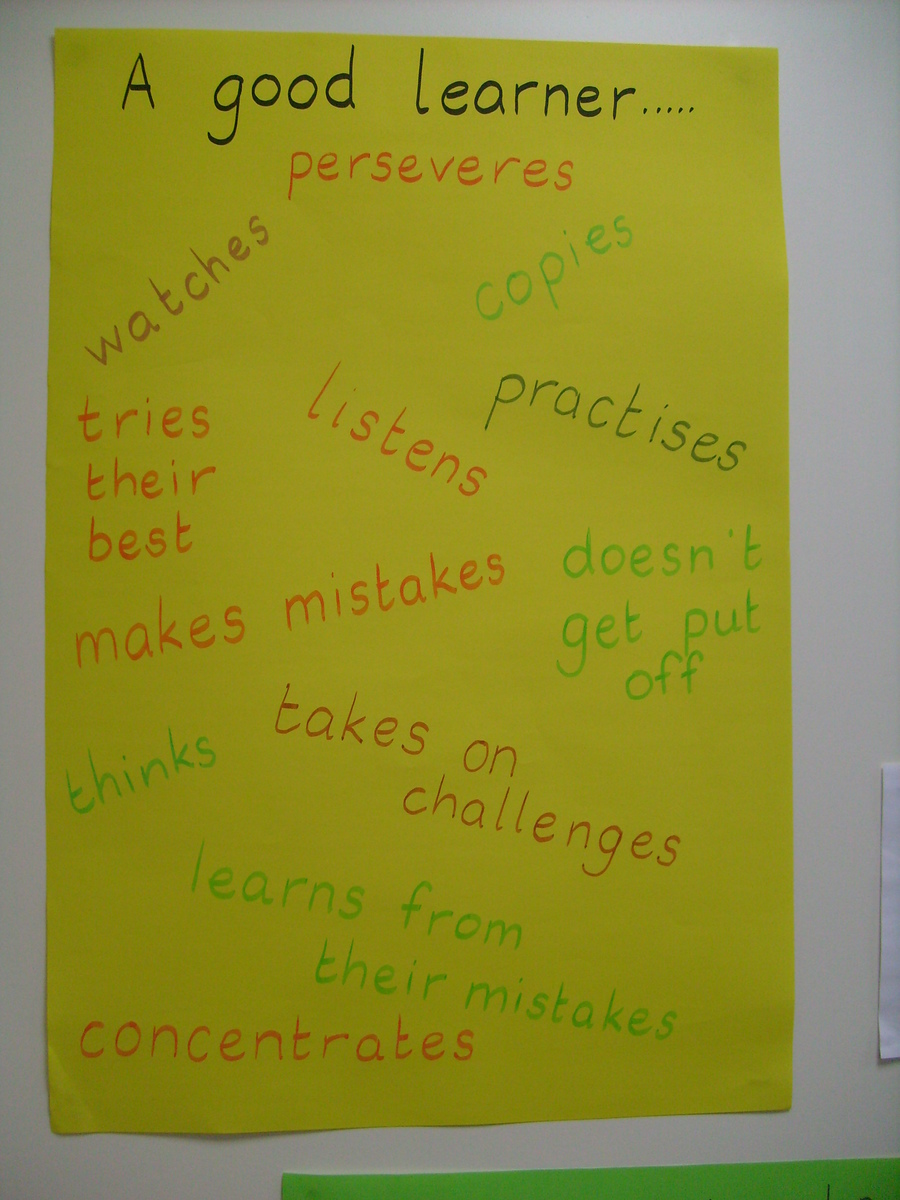 What is a good learner?