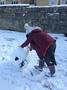 Snow day 936.JPG