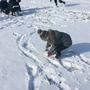 Snow day 1107.JPG