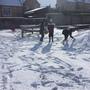 Snow day 1124.JPG
