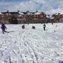 Snow day 1130.JPG