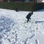 Snow day 1137.JPG